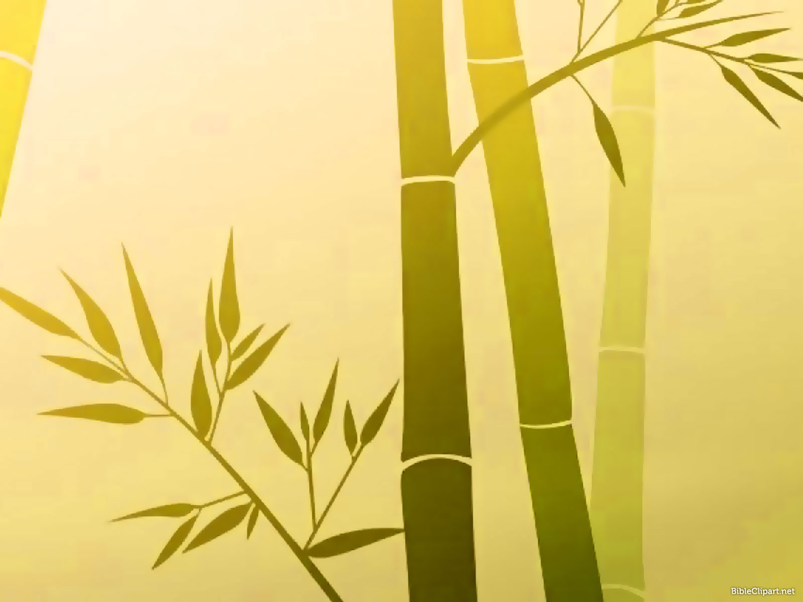 Bamboo Painting Background