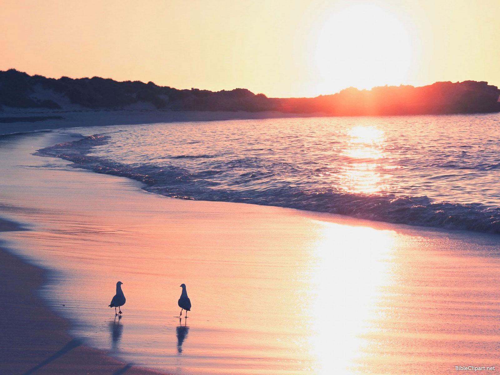 Beautiful Sunrise Presentation Background
