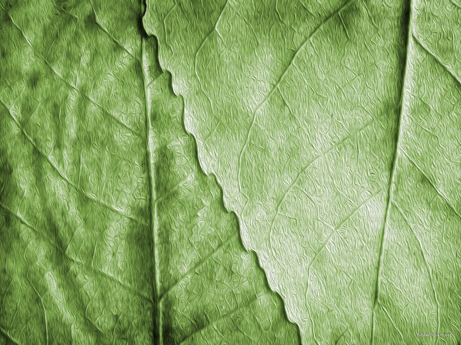 Green Leaves Oil Painting Background